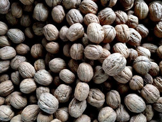 Walnuts can help beat hunger pangs: 5 things to know about the superfood